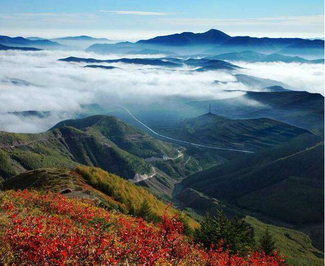 六盘山国家森林公园的主要景点有野荷谷,小南川,凉殿峡,植物园,二龙河